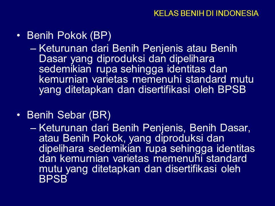 KELAS BENIH DI INDONESIA