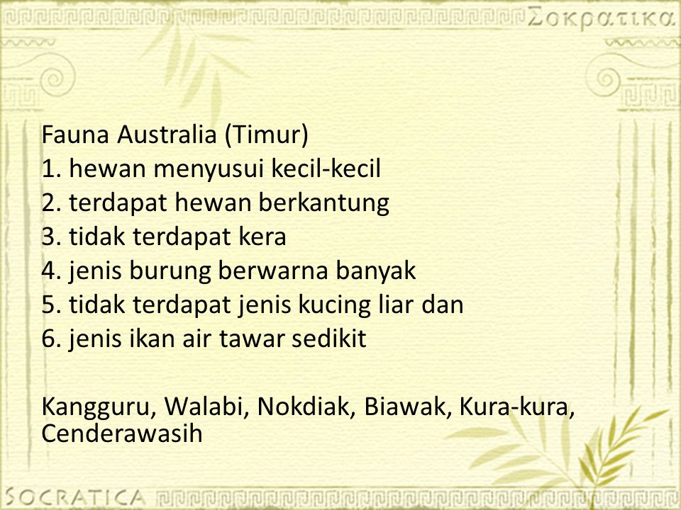 Fauna Australia (Timur)