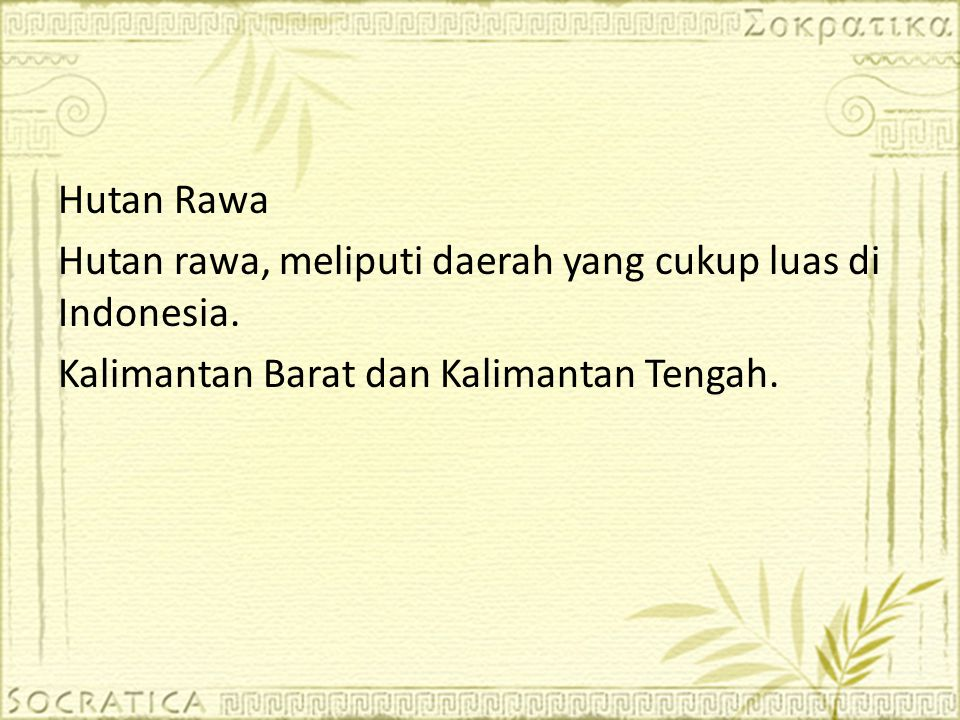 Hutan Rawa Hutan rawa, meliputi daerah yang cukup luas di Indonesia