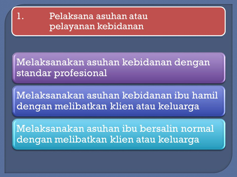 1. Pelaksana asuhan atau pelayanan kebidanan