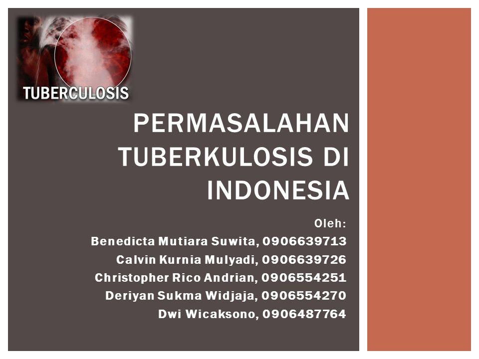 Permasalahan Tuberkulosis di Indonesia