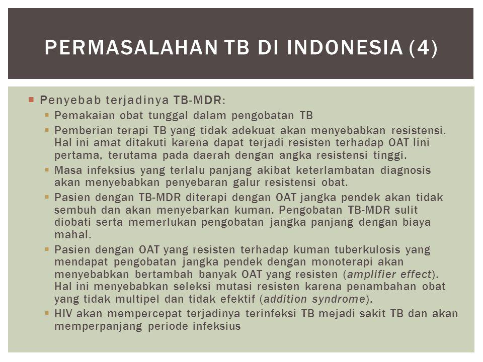 Permasalahan tb di indonesia (4)