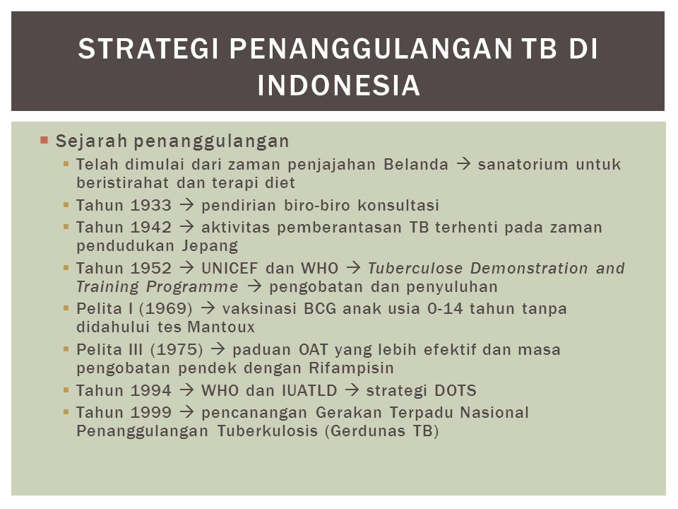 Strategi penanggulangan TB di Indonesia