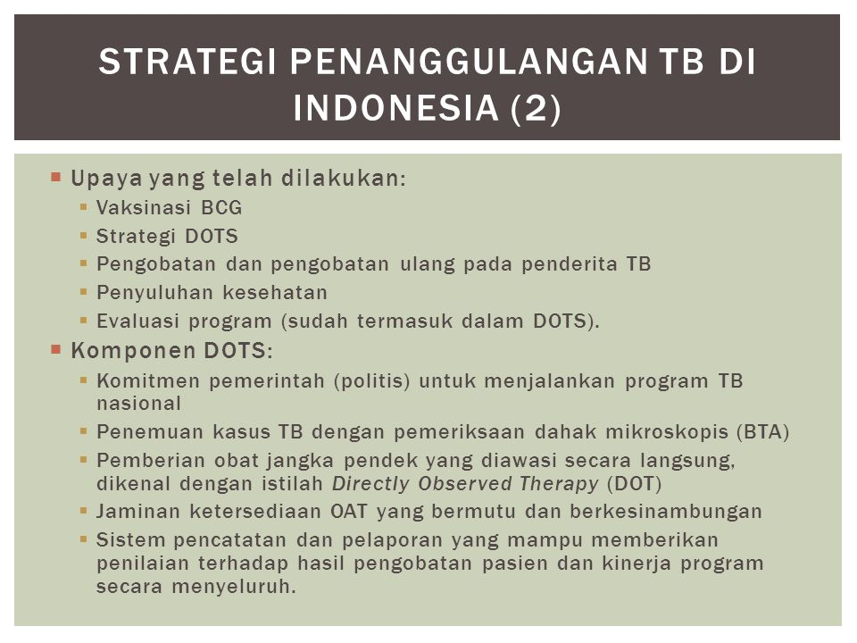 Strategi penanggulangan TB di Indonesia (2)