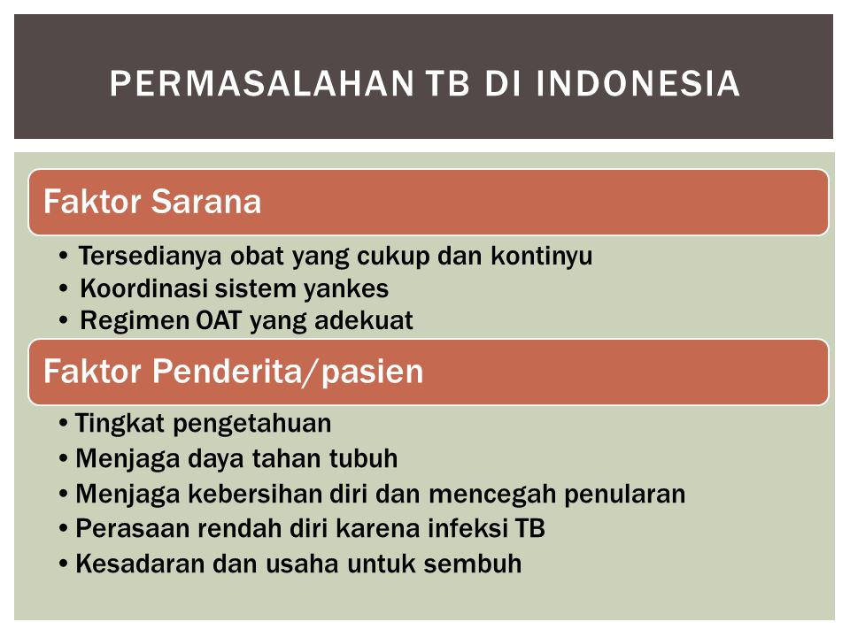 Permasalahan tb di indonesia