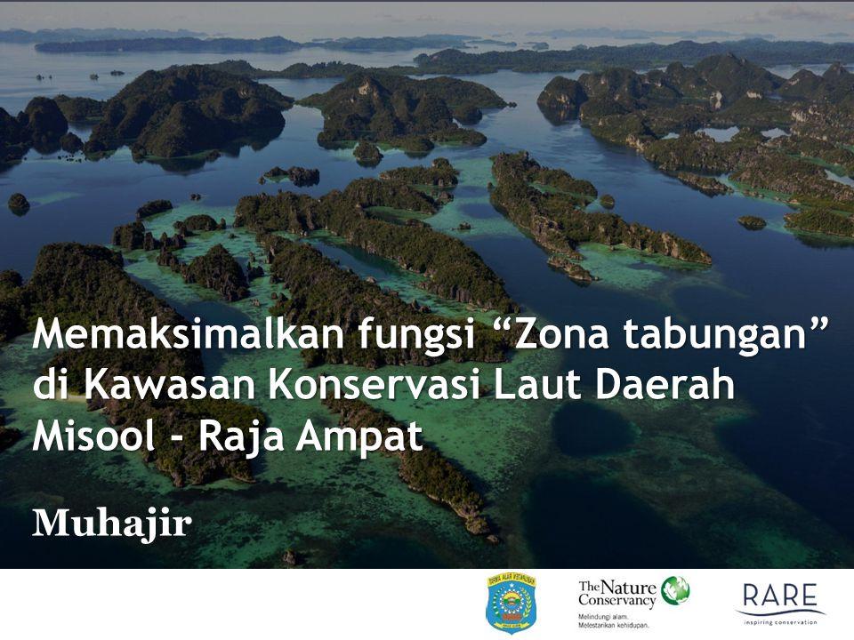 Memaksimalkan fungsi Zona tabungan di Kawasan Konservasi Laut Daerah Misool - Raja Ampat