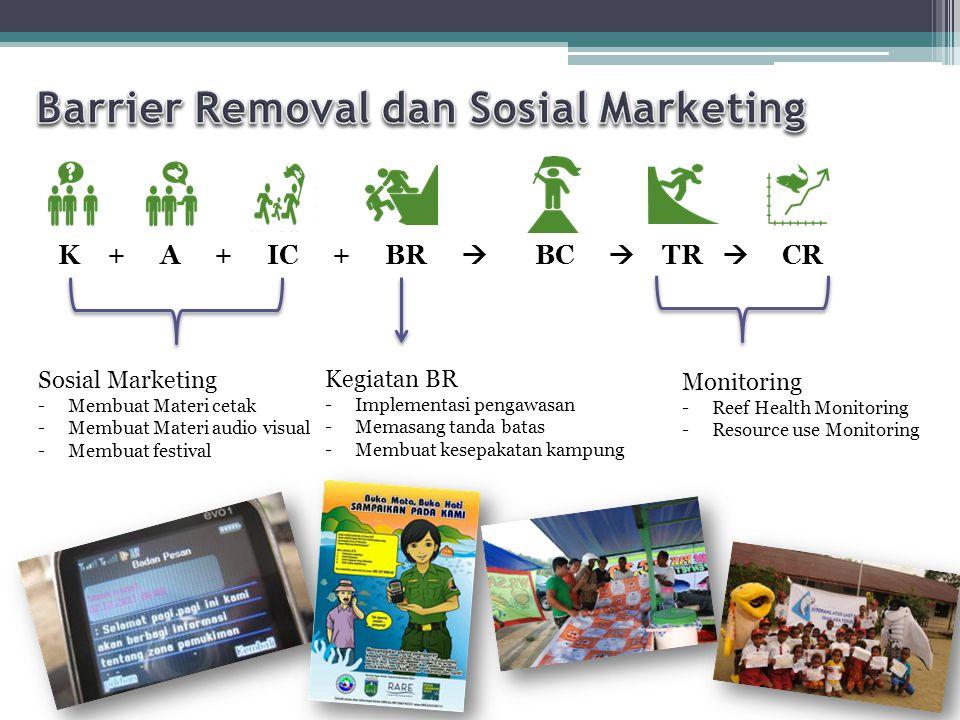 Barrier Removal dan Sosial Marketing
