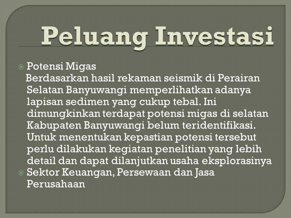 Peluang Investasi Potensi Migas