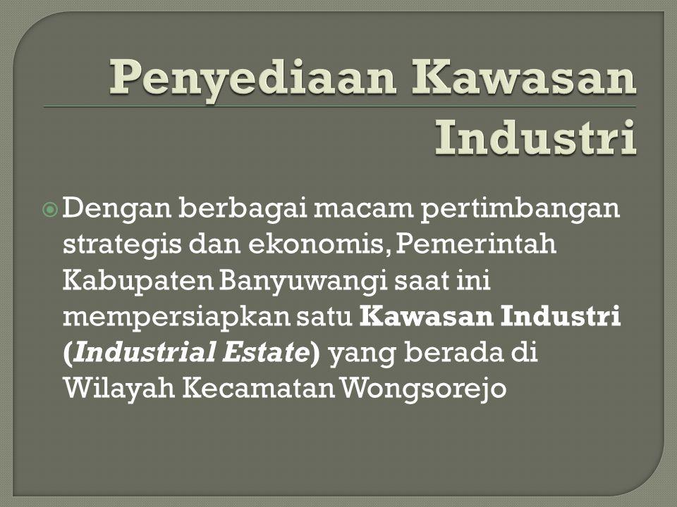 Penyediaan Kawasan Industri