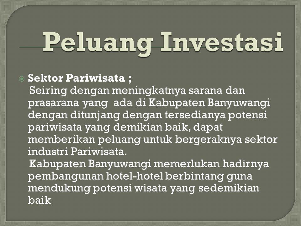 Peluang Investasi Sektor Pariwisata ;