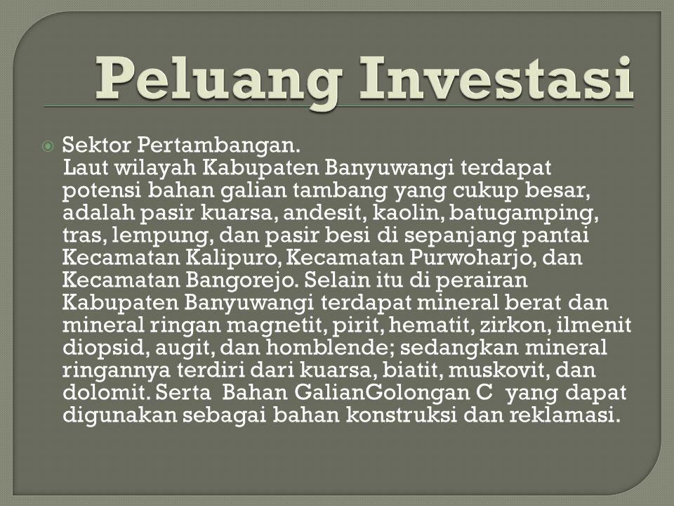 Peluang Investasi Sektor Pertambangan.