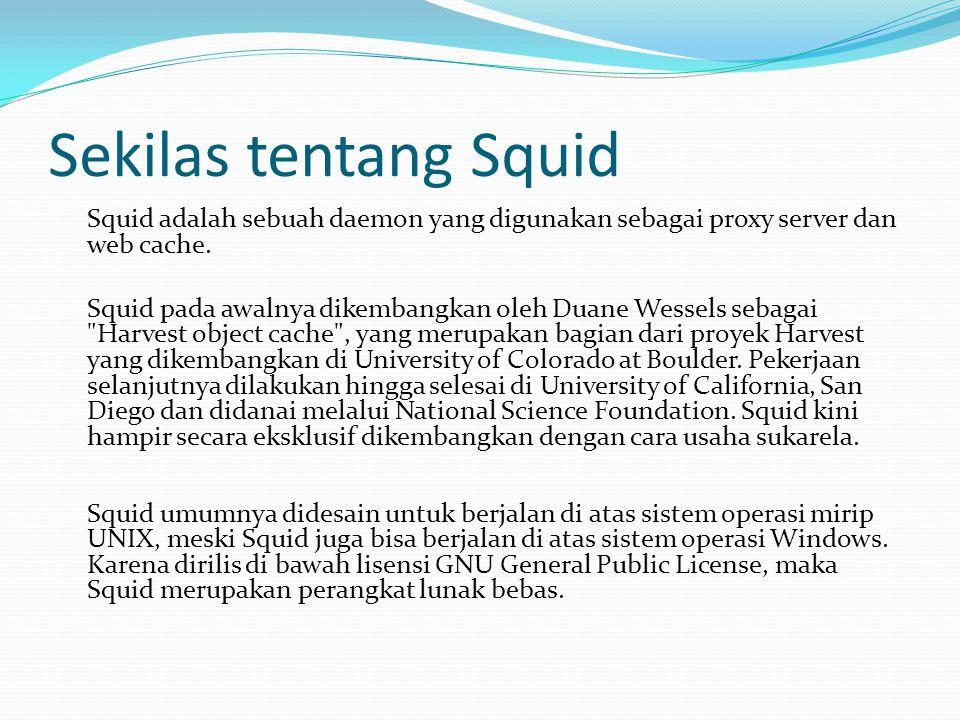 Sekilas tentang Squid