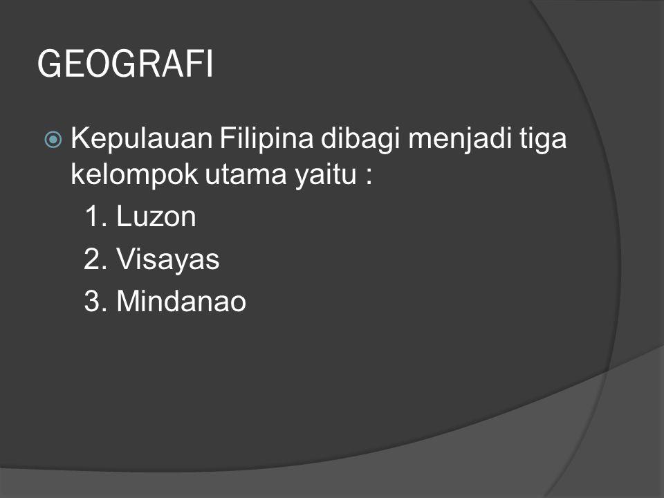GEOGRAFI Kepulauan Filipina dibagi menjadi tiga kelompok utama yaitu :