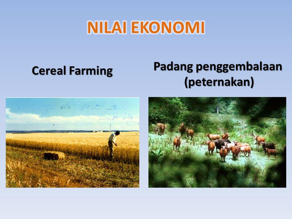 NILAI EKONOMI Padang penggembalaan (peternakan) Cereal Farming