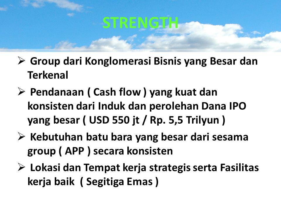 STRENGTH Group dari Konglomerasi Bisnis yang Besar dan Terkenal