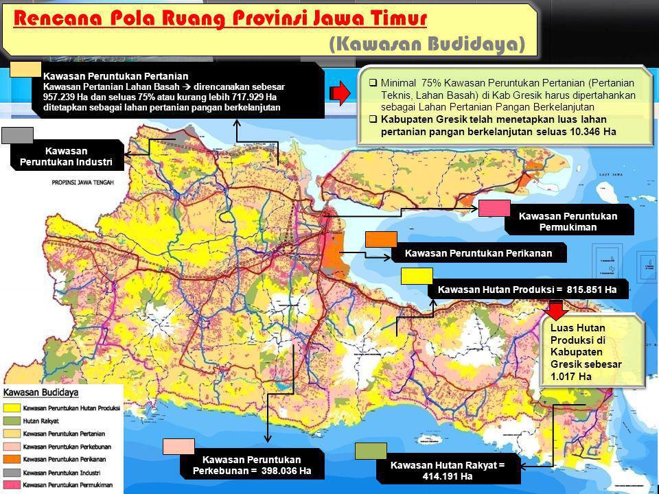 Rencana Pola Ruang Provinsi Jawa Timur