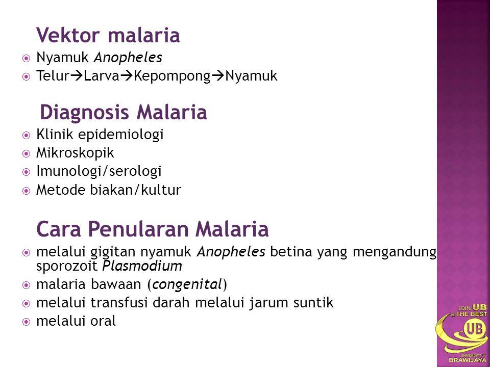 Cara Penularan Malaria