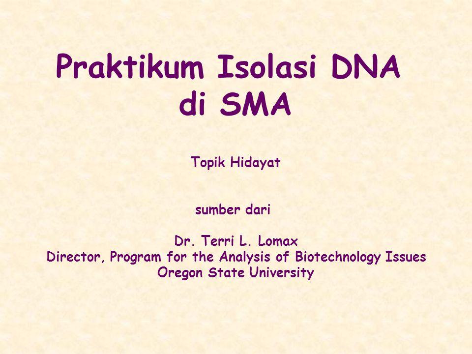 Praktikum Isolasi DNA di SMA