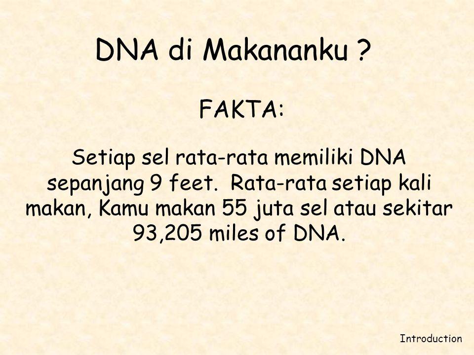 DNA di Makananku FAKTA: