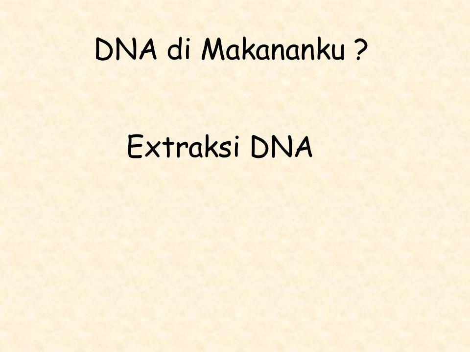 DNA di Makananku Extraksi DNA