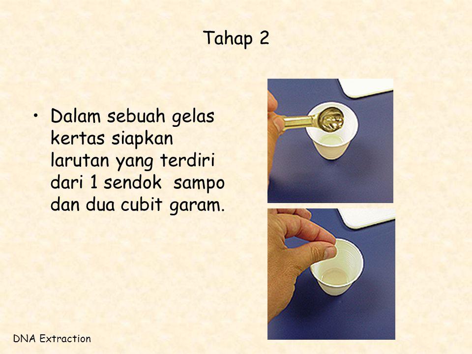 Tahap 2 Dalam sebuah gelas kertas siapkan larutan yang terdiri dari 1 sendok sampo dan dua cubit garam.