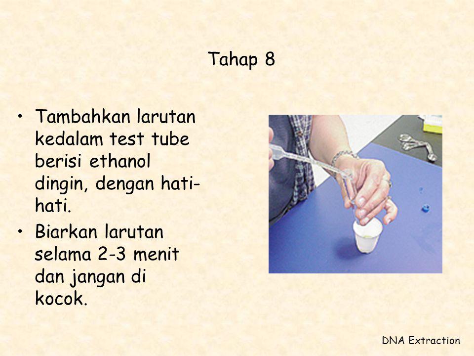 Tahap 8 Tambahkan larutan kedalam test tube berisi ethanol dingin, dengan hati-hati. Biarkan larutan selama 2-3 menit dan jangan di kocok.