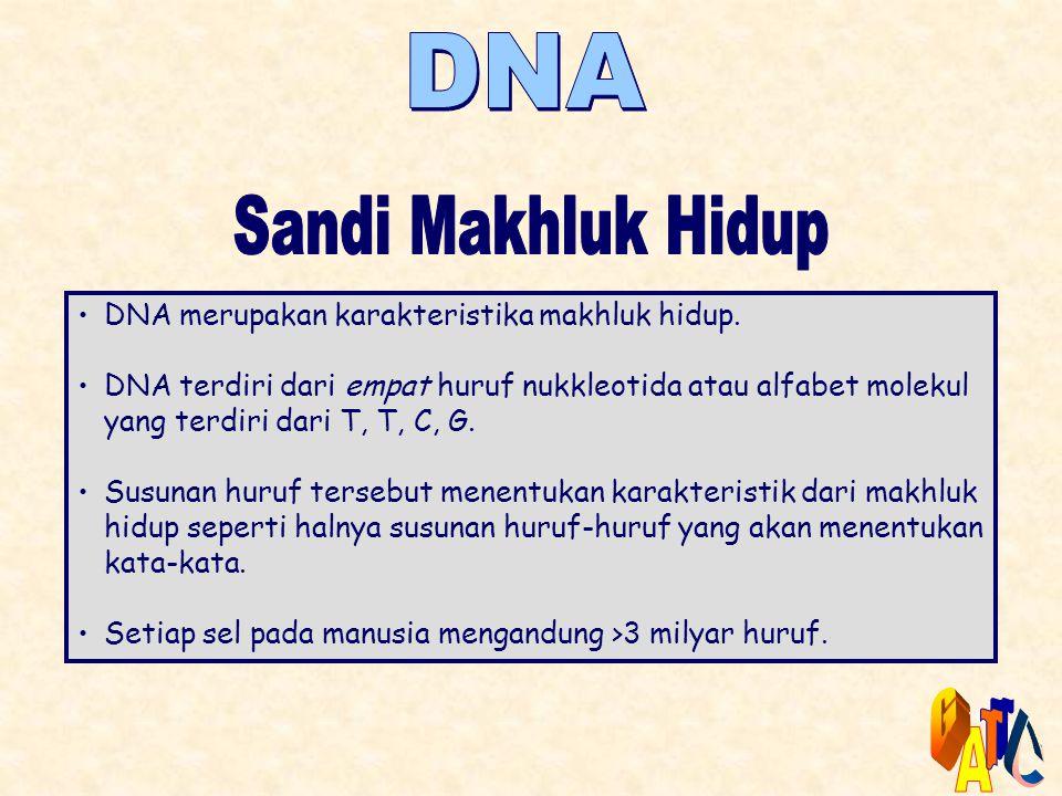 DNA Sandi Makhluk Hidup G T C A