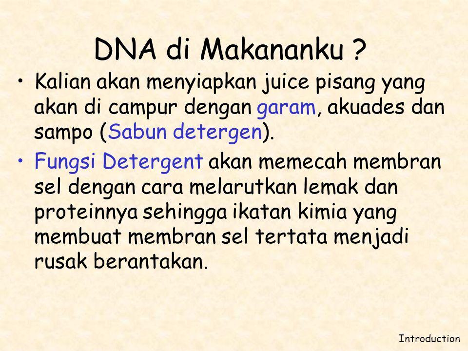 DNA di Makananku Kalian akan menyiapkan juice pisang yang akan di campur dengan garam, akuades dan sampo (Sabun detergen).