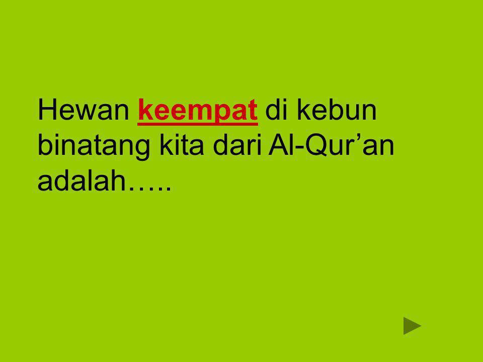Hewan keempat di kebun binatang kita dari Al-Qur'an adalah…..