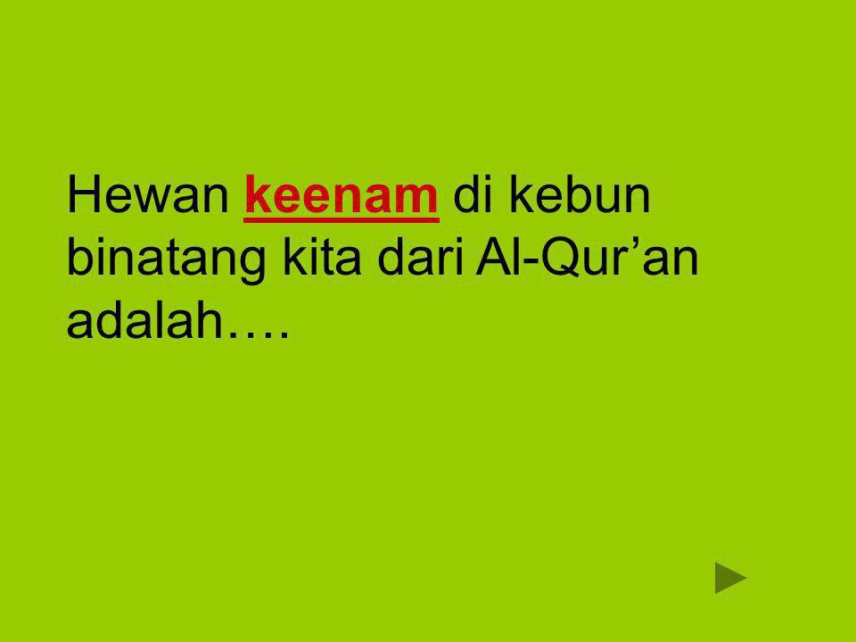 Hewan keenam di kebun binatang kita dari Al-Qur'an adalah….