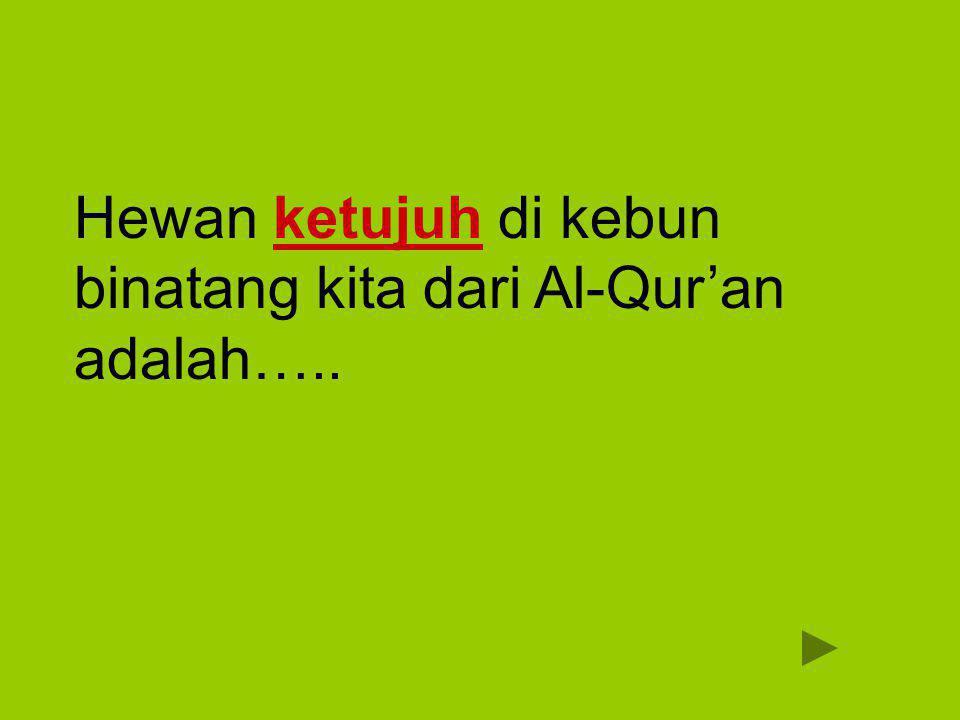 Hewan ketujuh di kebun binatang kita dari Al-Qur'an adalah…..