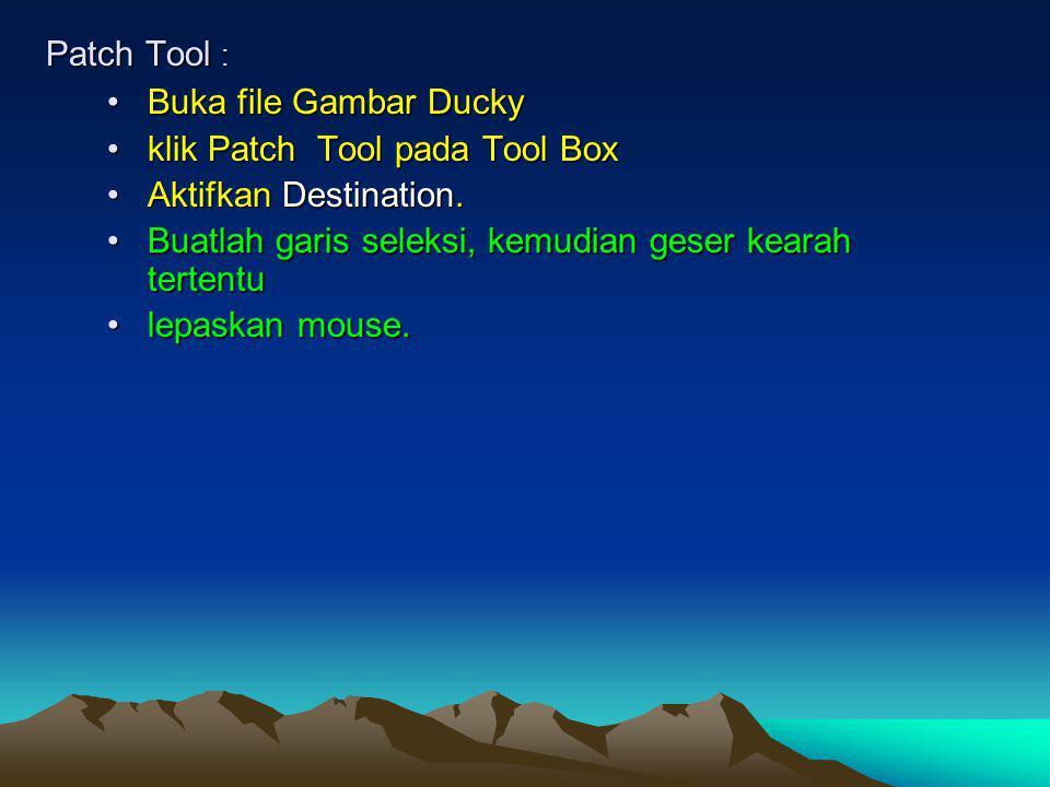 Patch Tool : Buka file Gambar Ducky. klik Patch Tool pada Tool Box. Aktifkan Destination. Buatlah garis seleksi, kemudian geser kearah tertentu.