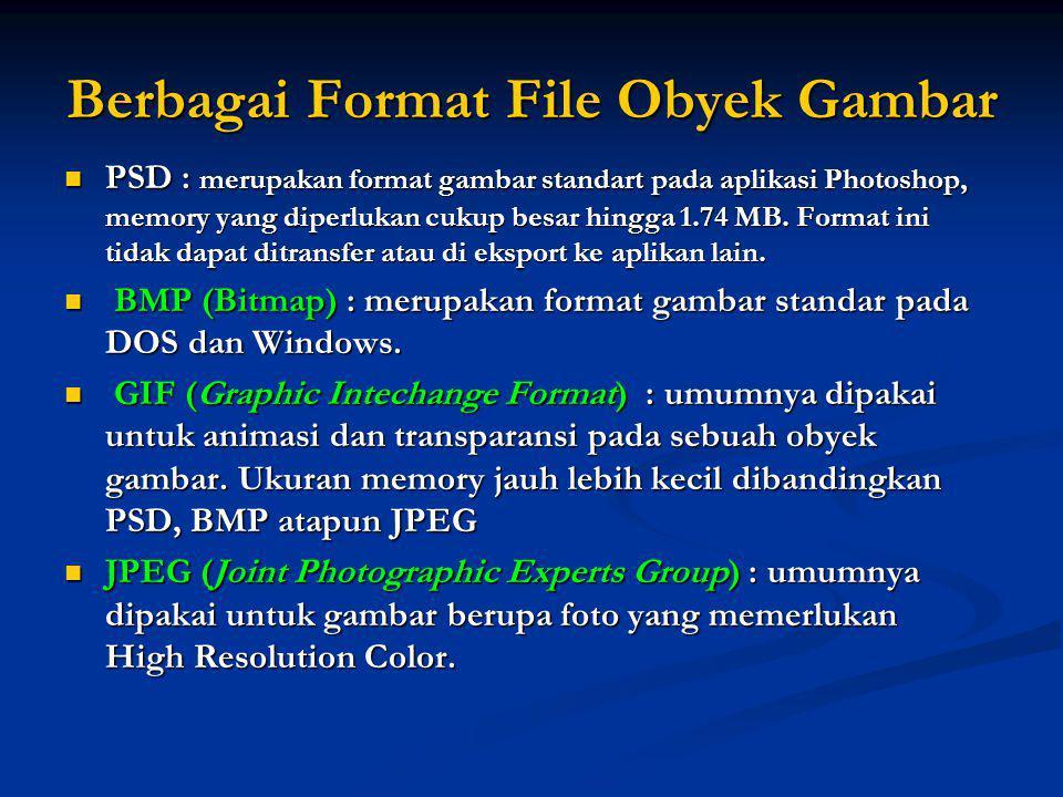 Berbagai Format File Obyek Gambar