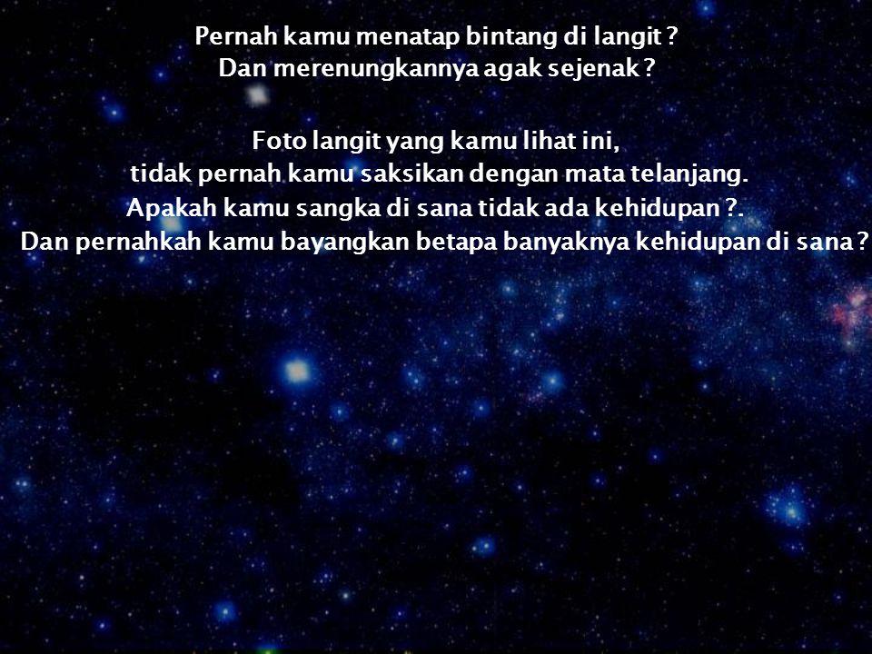Pernah kamu menatap bintang di langit