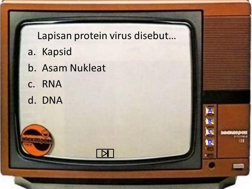 Lapisan protein virus disebut… Kapsid Asam Nukleat RNA DNA