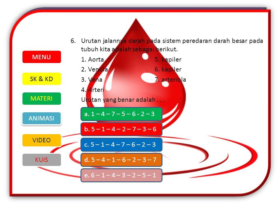 6. Urutan jalannya darah pada sistem peredaran darah besar pada tubuh kita adalah sebagai berikut. 1. Aorta 5. kapiler 2. Venula 6. kapiler 3. Vena 7. arteriola 4. Arteri Urutan yang benar adalah . . .