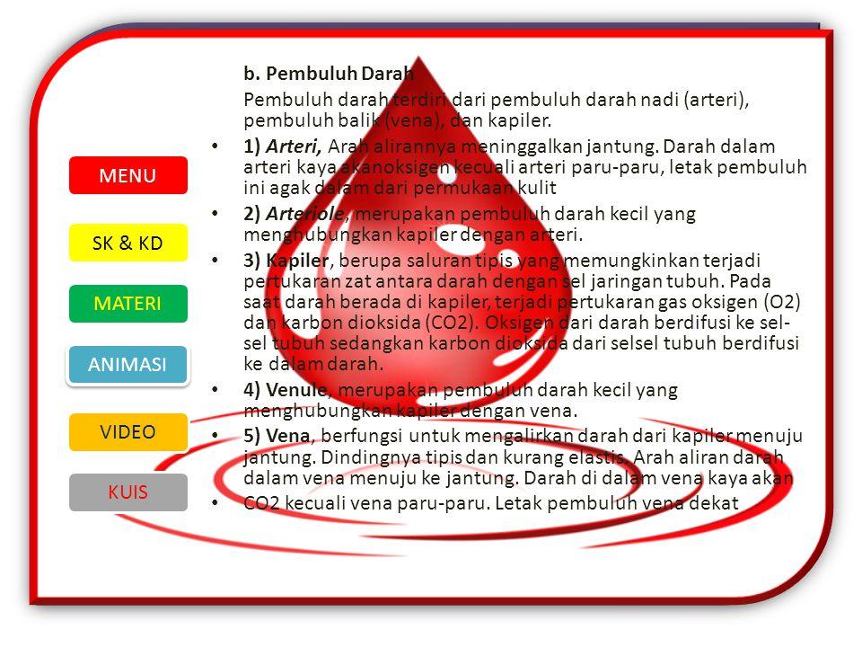 b. Pembuluh Darah Pembuluh darah terdiri dari pembuluh darah nadi (arteri), pembuluh balik (vena), dan kapiler.
