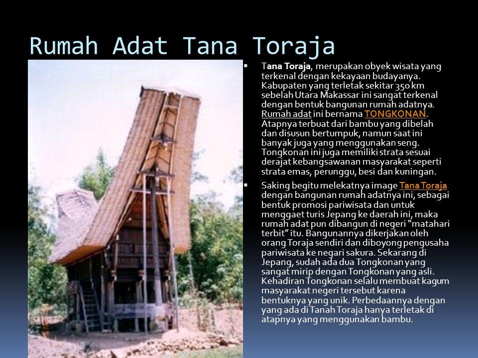 Rumah Adat Tana Toraja