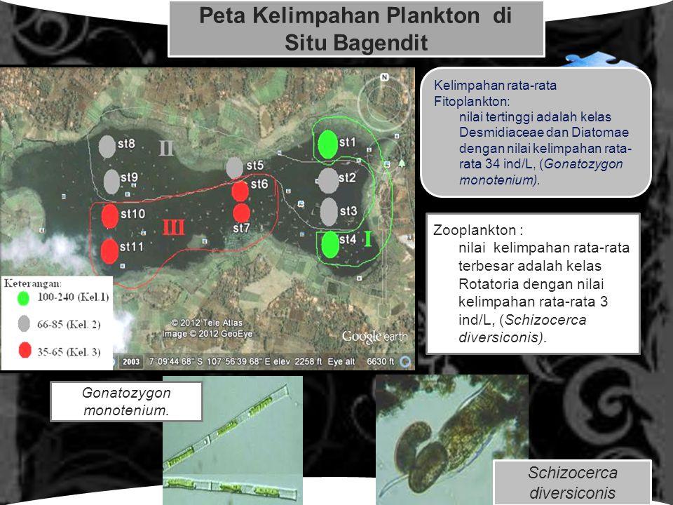 Peta Kelimpahan Plankton di Situ Bagendit