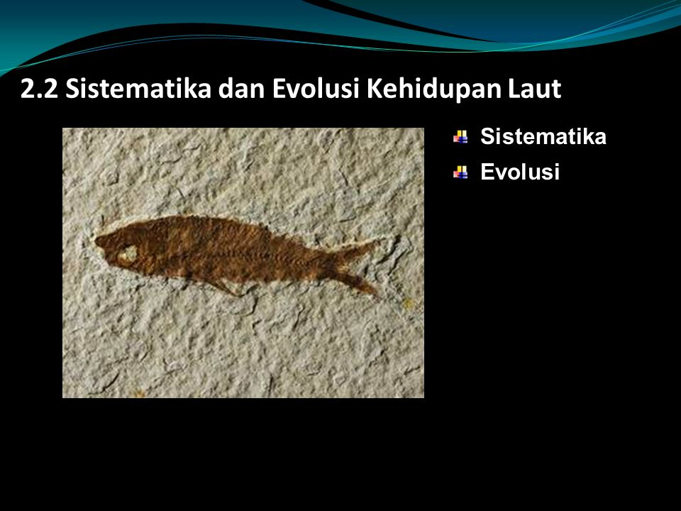 2.2 Sistematika dan Evolusi Kehidupan Laut
