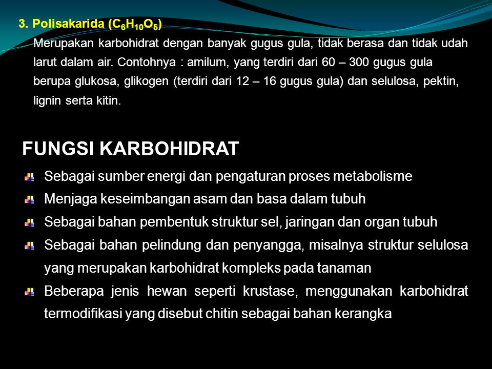 3. Polisakarida (C6H10O5)