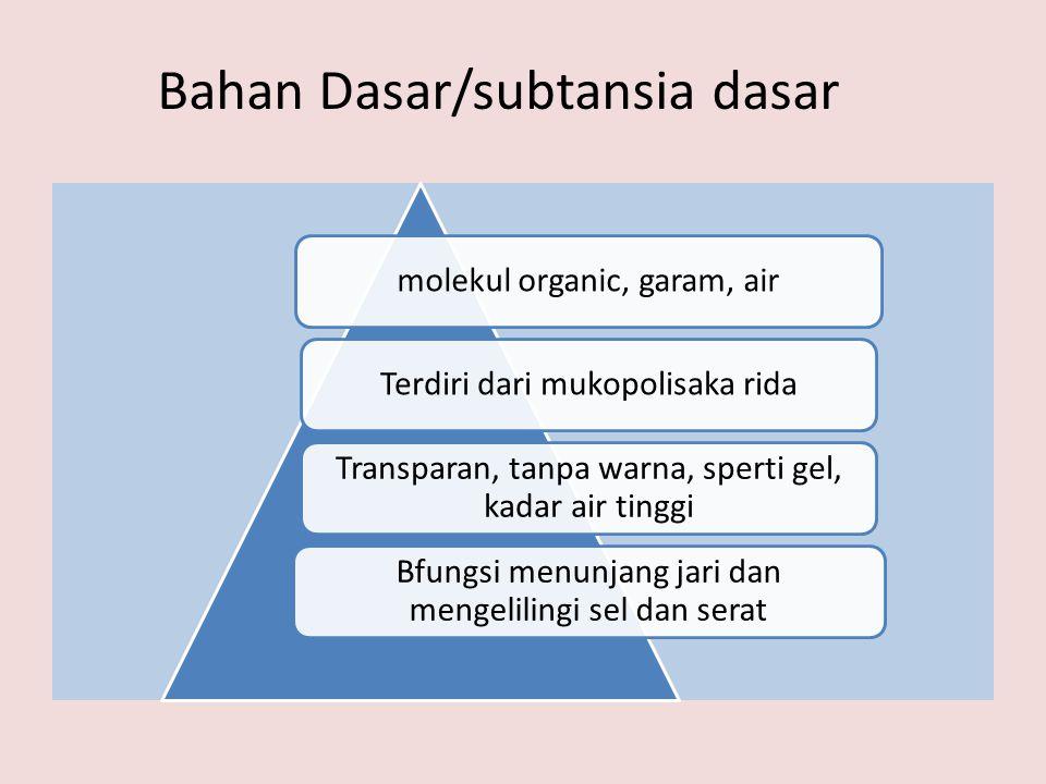 Bahan Dasar/subtansia dasar