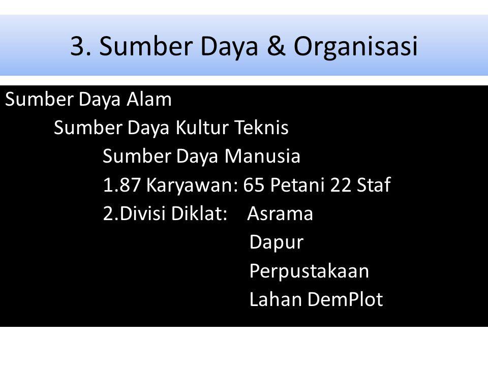 3. Sumber Daya & Organisasi
