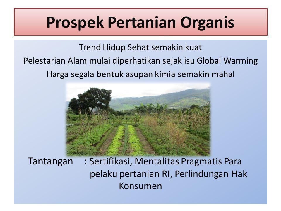 Prospek Pertanian Organis