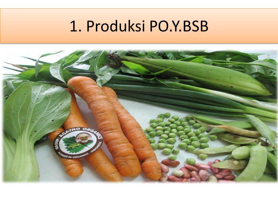 1. Produksi PO.Y.BSB
