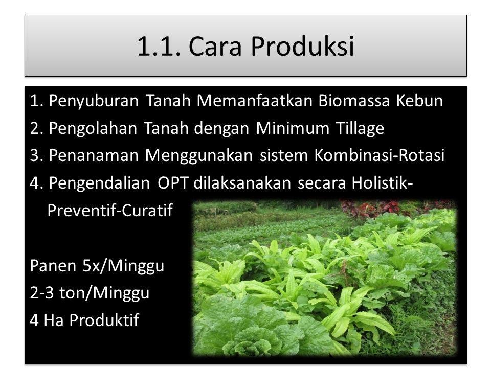1.1. Cara Produksi