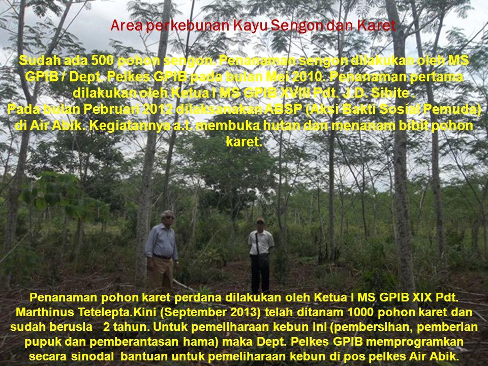 Area perkebunan Kayu Sengon dan Karet