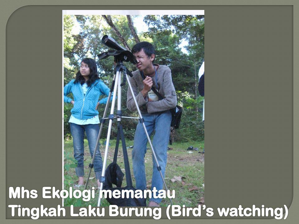 Mhs Ekologi memantau Tingkah Laku Burung (Bird's watching)