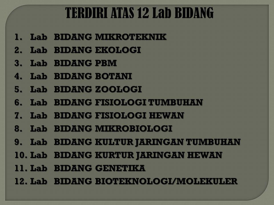 TERDIRI ATAS 12 Lab BIDANG