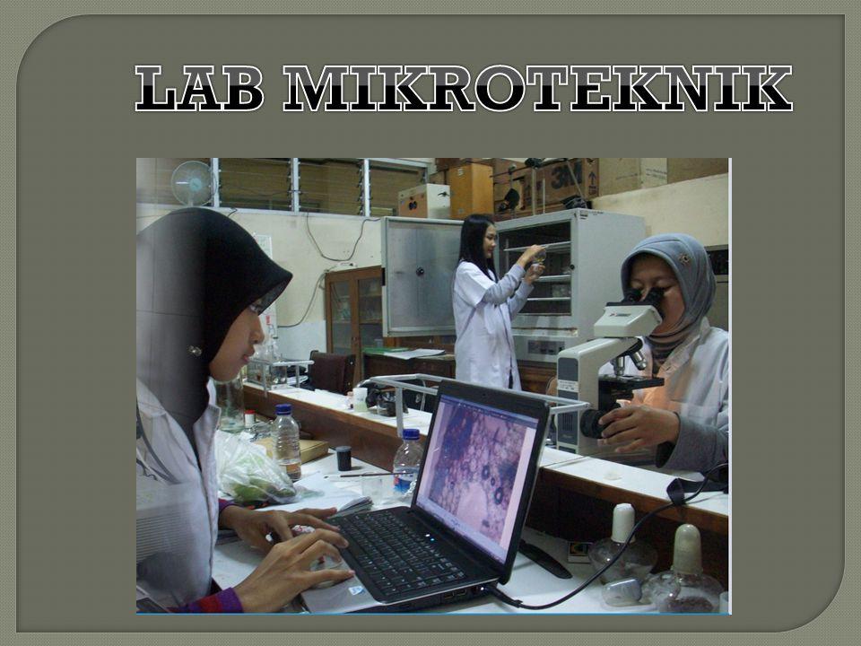 LAB MIKROTEKNIK